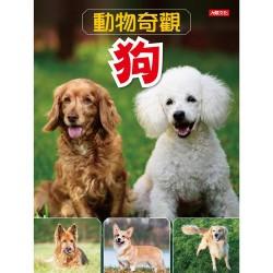 動物奇觀:狗